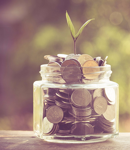 a plant growing out of a jar of coins representing Investment growth